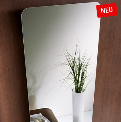 Badheizkörper mit Spiegelfront